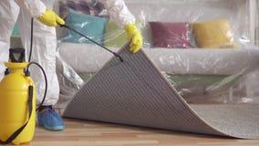 Zakończenie w górę tępiciela czyści dywan z kiścią zbiory