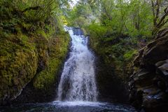 Zakończenie w górę widoku Bridal przesłona spada, Oregon obraz stock