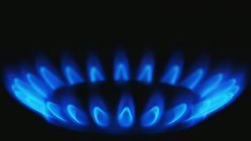 Zakończenie w górę widoku płonący benzynowi jęzory kuchenna benzynowa kuchenka Początkowa faza zapłon zbiory wideo