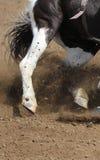Zakończenie w górę widoku szybki działający konia i latania brud zdjęcia royalty free