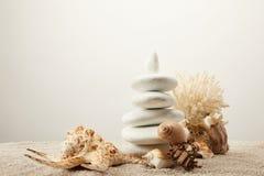 zakończenie w górę widoku ustaweni białego morza kamienie i seashells na piasku na popielatym tle Obraz Royalty Free