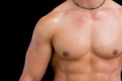 Zakończenie w połowie sekcja bez koszuli mięśniowy mężczyzna zdjęcie royalty free