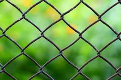 Zakończenie widok łańcuszkowego połączenia ogrodzenie z skoszonym zieleni pola blurr zdjęcie stock