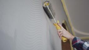 Zakończenie widok kobiety ` s ręka maluje ściennego używa farba rolownika Rozochocona młoda kobieta w koszula dekoruje ich nowego zbiory