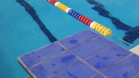 Zakończenie widok nurkowa deska w pływackim basenie zdjęcie wideo