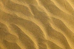 2011 zako?czenia pustynny Luty wizerunku fotografii piasek bra? texture bra? obraz royalty free