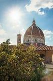 Zakończenie dach w budynku, drzewie i katedry kopule z pogodnym niebieskim niebem w Florencja, Zdjęcia Royalty Free