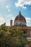 Zakończenie dach w budynku, drzewie i katedry kopule z pogodnym niebieskim niebem w Florencja, Fotografia Royalty Free