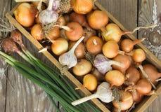 Zakończenie organicznie cebulkowy czosnek Fotografia Royalty Free