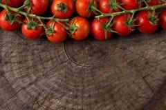Zakończenie pomidory zdjęcie royalty free