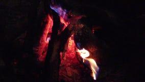 Zako?czenie w g?r? ognisko p?omieni campingu ogie?, Super zwolnionego tempa p?on?ca ?upka zdjęcie wideo