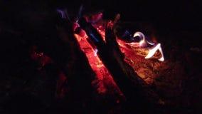 Zako?czenie w g?r? ognisko p?omieni campingu ogie?, Super zwolnionego tempa p?on?ca ?upka zbiory wideo