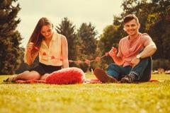 Zakochana para w parku Fotografia Royalty Free