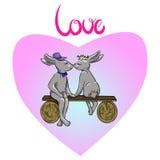 Zakochana zając, serce, miłość Zdjęcia Royalty Free