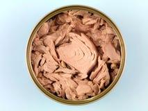 zakonserwowany tuńczyk Obraz Royalty Free