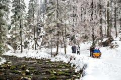 Zakopane, Dolina Koscieliska, Polônia - 7 de fevereiro de 2017: Povos que andam no parque nacional com natureza bonita do inverno Fotografia de Stock