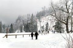 Zakopane, Dolina Koscieliska, Polônia - 7 de fevereiro de 2017: Prople que anda no parque nacional com natureza bonita do inverno Imagem de Stock Royalty Free