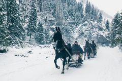ZAKOPANE, POLAND, February 10, 2018, Several harnesses of a sleigh drawn by horses are riding along a snow-covered road in the mo royalty free stock photo
