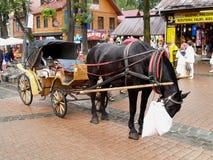 ZAKOPANE, POLAND.The horse eats a forage on the street Royalty Free Stock Photos
