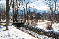 Zakopane, Polen - Februari 21, 2019 Park in de stad met sneeuw met een mooi blokhuis wordt bedekt dat Zichtbare bomen, beek stock foto