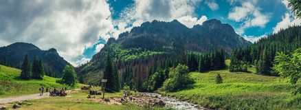 Zakopane/Polen - Juli 08 2018 Panorama op de vallei tussen de bergen stock foto