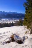 Zakopane at Tatra mountains in winter Royalty Free Stock Photography