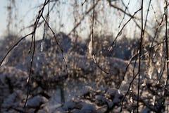 zakrywająca czarodziejskiego lasu domu śniegu bajki zima drewniana Fotografia Stock