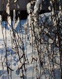 zakrywająca czarodziejskiego lasu domu śniegu bajki zima drewniana Obrazy Royalty Free