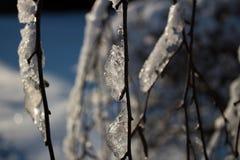 zakrywająca czarodziejskiego lasu domu śniegu bajki zima drewniana Obraz Stock