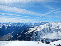 zakrywająca krajobrazowa halnej sosny śniegu świerczyny zima Fotografia Stock