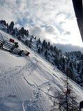 zakrywająca krajobrazowa halnej sosny śniegu świerczyny zima Obrazy Royalty Free