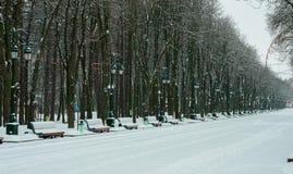 zakrywająca parka śniegu zima zdjęcia stock