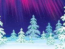 zakrywający lasowych świateł północny nadmierny połysku śnieg royalty ilustracja