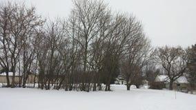 Zakrywający w zimy błogości Fotografia Royalty Free