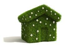 zakrywający kwiatu trawy dom Obrazy Stock