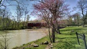 Zakrywający most w Indiana parku Zdjęcie Stock