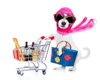 Zakupy diwy pies zdjęcia stock