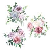 Zakurzeni menchie, śmietankowe - białego i mauve antyka różanego wektorowego projekta ślubni bukiety royalty ilustracja