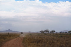 Zakurzona droga od Serengeti Obraz Stock