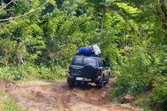 Zakurzona safari droga w Madagascar Zdjęcie Royalty Free
