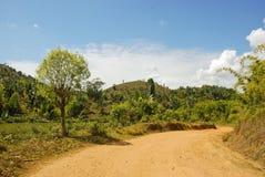 Zakurzona safari droga w Madagascar Zdjęcie Stock