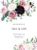 Zakurzone menchie, śmietankowe - biała antyk róża, bladych kwiatów projekta ślubu wektorowa rama royalty ilustracja