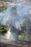 Zakynthos island low scale fire in volimes July 03 2013,Greece Royalty Free Stock Photos