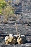 Zakynthos wyspy depresji skala ogień w volimes Lipiec 03 2013, Grecja Obrazy Stock