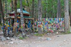Zalaa - ленты, связанные к деревьям Стоковое Изображение