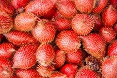 Zalacca fruit Royalty Free Stock Photography