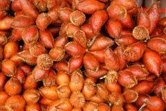 Zalacca lub Sala, Egzotyczna owoc Tajlandia Zdjęcia Royalty Free