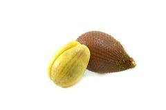 Zalacca owoc odizolowywająca na białym tle Obrazy Stock