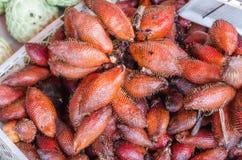 Zalacca tropical fruit Royalty Free Stock Photo