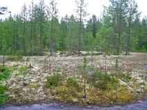 Zalavruga landskap Fotografering för Bildbyråer